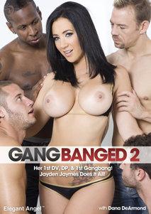 Elegant Angel Porn DVD